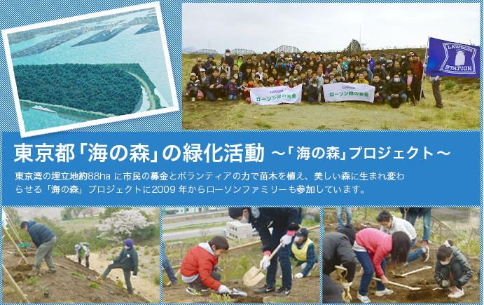 東京都「海の森」の緑化活動~「 海の森」プロジェクト ~